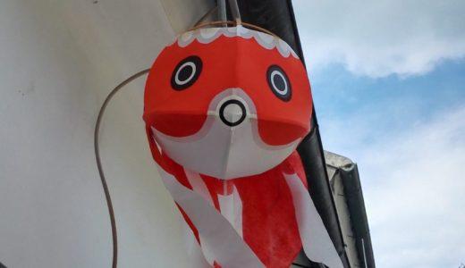 柳井ウェルネスパークの大型遊具で外遊び+柳井の醤油蔵見学だ!