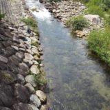 廿日市市での川遊びは岩倉ファームパークが最高!